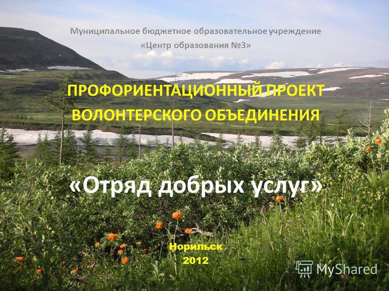 Муниципальное бюджетное образовательное учреждение «Центр образования 3» ПРОФОРИЕНТАЦИОННЫЙ ПРОЕКТ ВОЛОНТЕРСКОГО ОБЪЕДИНЕНИЯ «Отряд добрых услуг» Норильск 2012