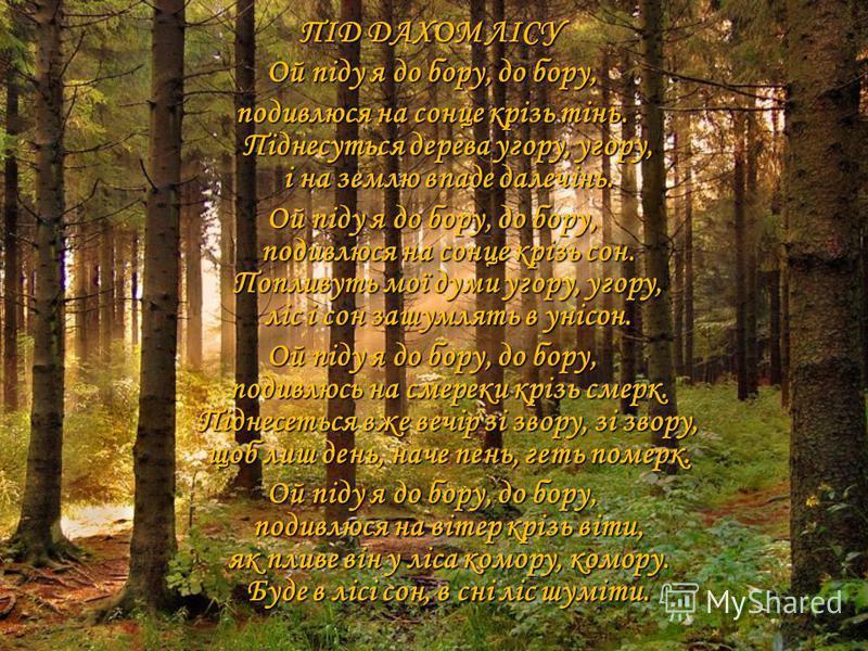 ПІД ДАХОМ ЛІСУ Ой піду я до бору, до бору, подивлюся на сонце крізь тінь. Піднесуться дерева угору, угору, і на землю впаде далечінь. Ой піду я до бору, до бору, подивлюся на сонце крізь сон. Попливуть мої думи угору, угору, ліс і сон зашумлять в уні