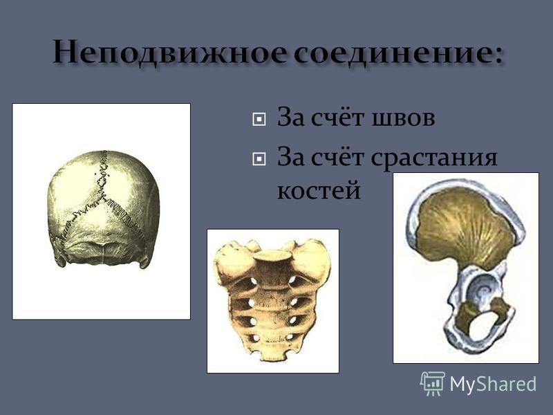 За счёт швов За счёт срастания костей