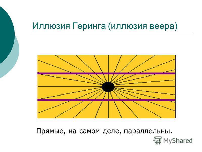 Иллюзия Геринга (иллюзия веера) Прямые, на самом деле, параллельны.