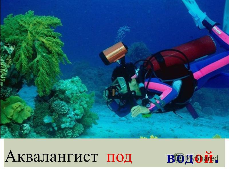 Аквалангист под водой.