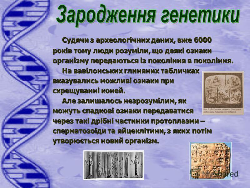 Судячи з археологічних даних, вже 6000 років тому люди розуміли, що деякі ознаки організму передаються із покоління в покоління. На вавілонських глиняних табличках вказувались можливі ознаки при схрещуванні коней. Але залишалось незрозумілим, як можу