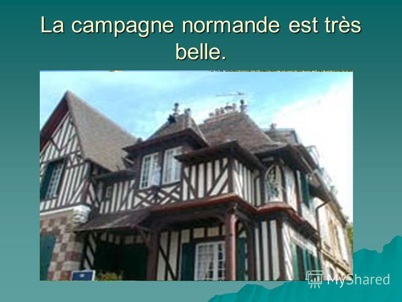 La campagne normande est très belle.