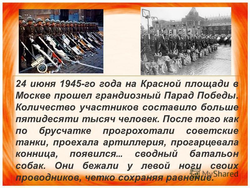 24 июня 1945-го года на Красной площади в Москве прошел грандиозный Парад Победы. Количество участников составило больше пятидесяти тысяч человек. После того как по брусчатке прогрохотали советские танки, проехала артиллерия, прогарцевала конница, по