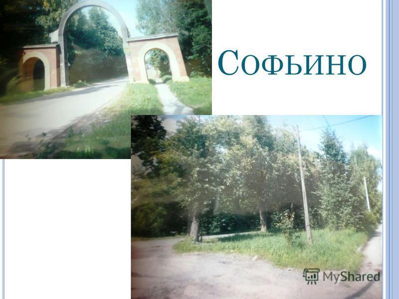 С ОФЬИНО