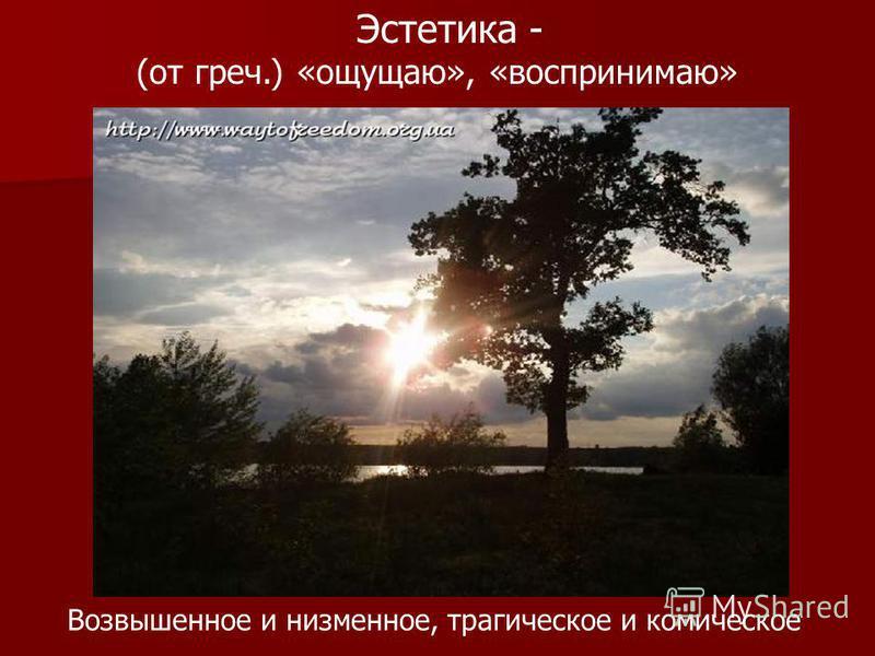 Эстетика - (от греч.) «ощущаю», «воспринимаю» Возвышенное и низменное, трагическое и комическое
