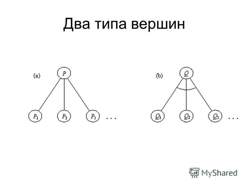 Два типа вершин