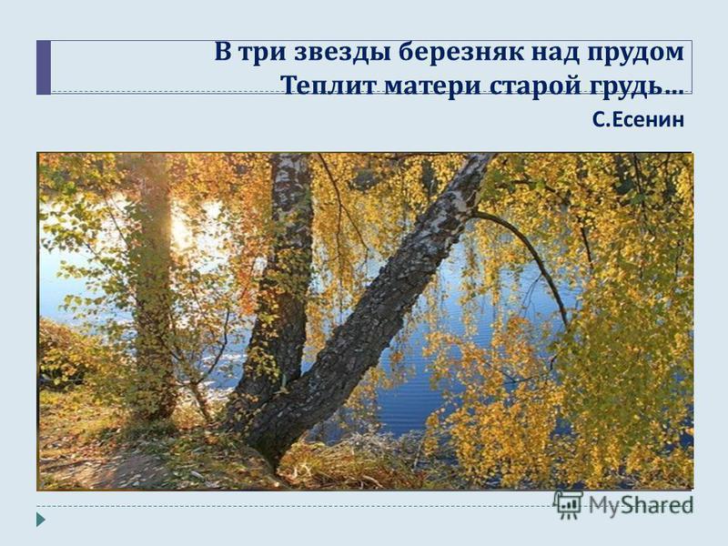 В три звезды березняк над прудом Теплит матери старой грудь … С. Есенин