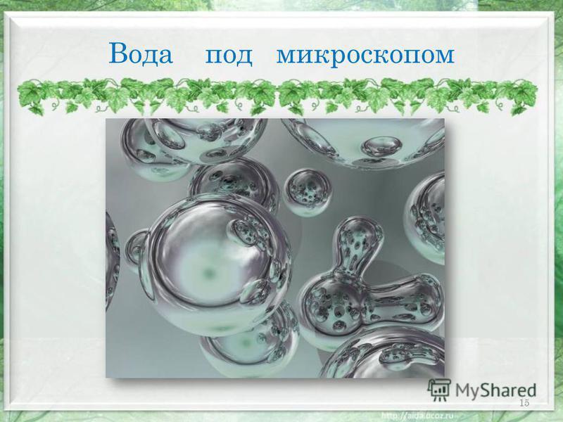 Вода под микроскопом 15