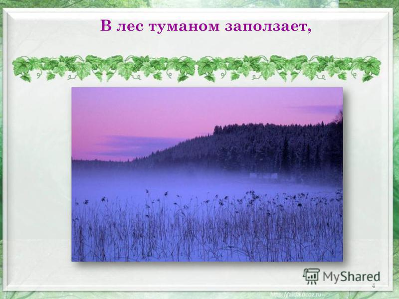 В лес туманом заползает, 4