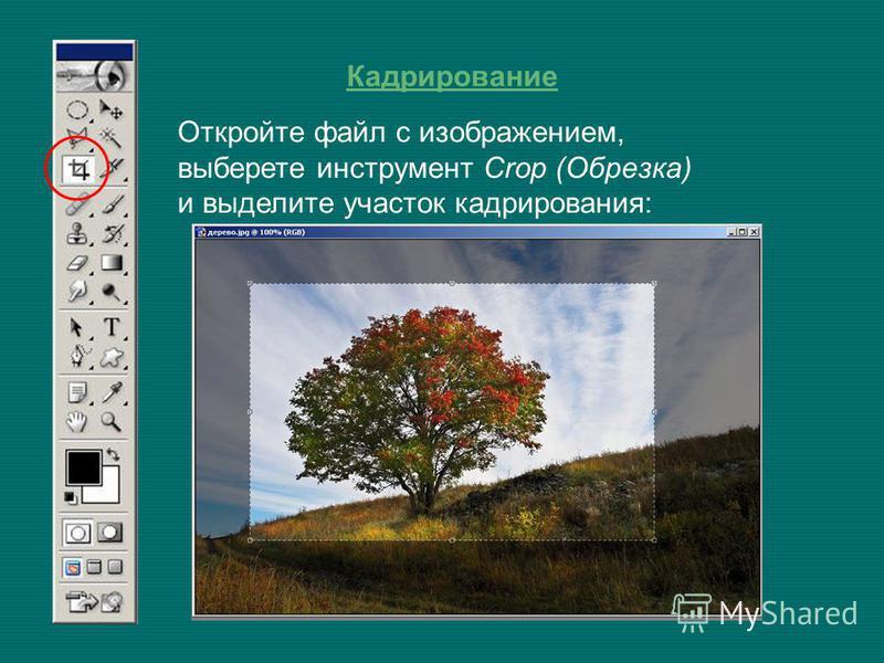 Кадрирование Откройте файл с изображением, выберете инструмент Crop (Обрезка) и выделите участок кадрирования: