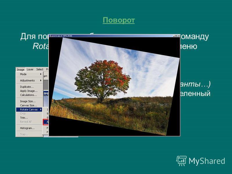 Поворот Для поворота изображения используют команду Rotate Canvas (Поворот холста) из меню Image (Изображение). Вкладка Arbitrary… (Варианты…) позволяет выбрать определенный угол поворота.