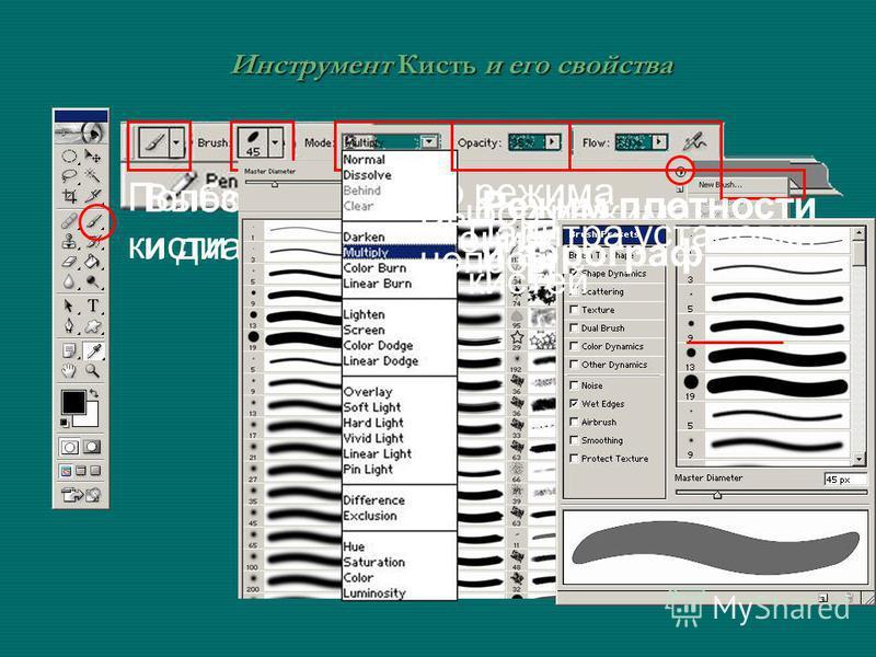 Инструмент Кисть и его свойства Пользовательские кисти Выбор формы и диаметра Выбор режима наложения Выбор режима непрозрачности Режим плотности и аэрограф Палитра установки кистей