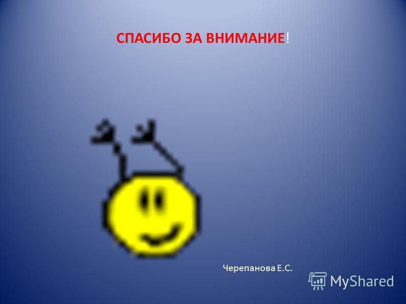 СПАСИБО ЗА ВНИМАНИЕ! Черепанова Е.С.