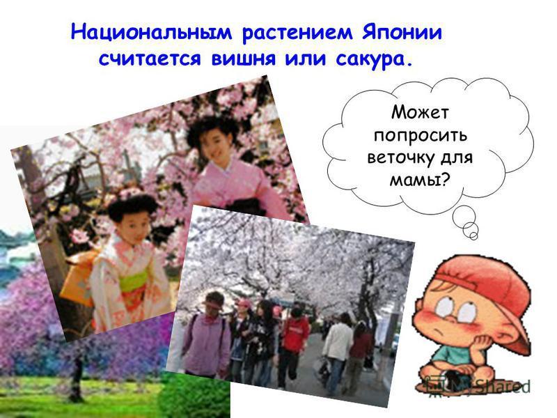Национальным растением Японии считается вишня или сакура. Может попросить веточку для мамы?