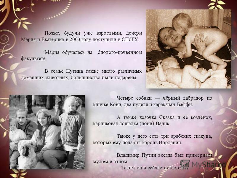 Позже, будучи уже взрослыми, дочери Мария и Екатерина в 2003 году поступили в СПбГУ. Мария обучалась на биолого-почвенном факультете. В семье Путина также много различных домашних животных, большинство были подарены Четыре собаки чёрный лабрадор по к
