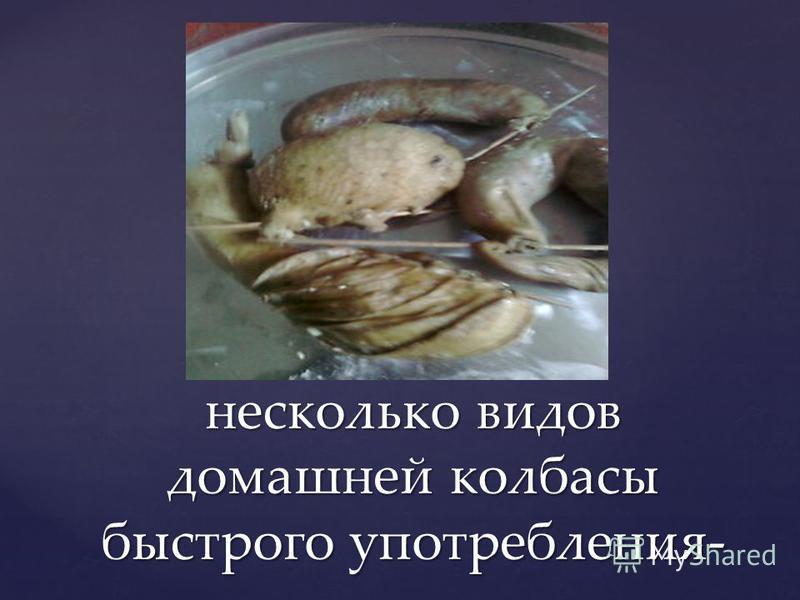 несколько видов домашней колбасы быстрого употребления-