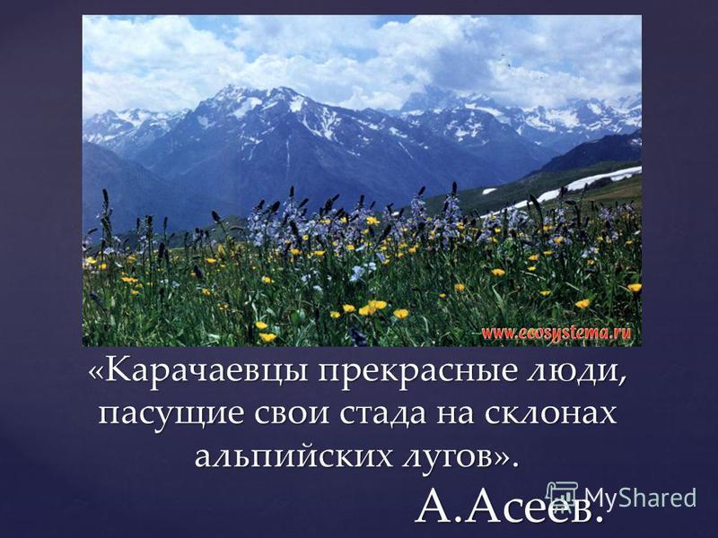 «Карачаевцы прекрасные люди, пасущие свои стада на склонах альпийских лугов». А.Асеев.