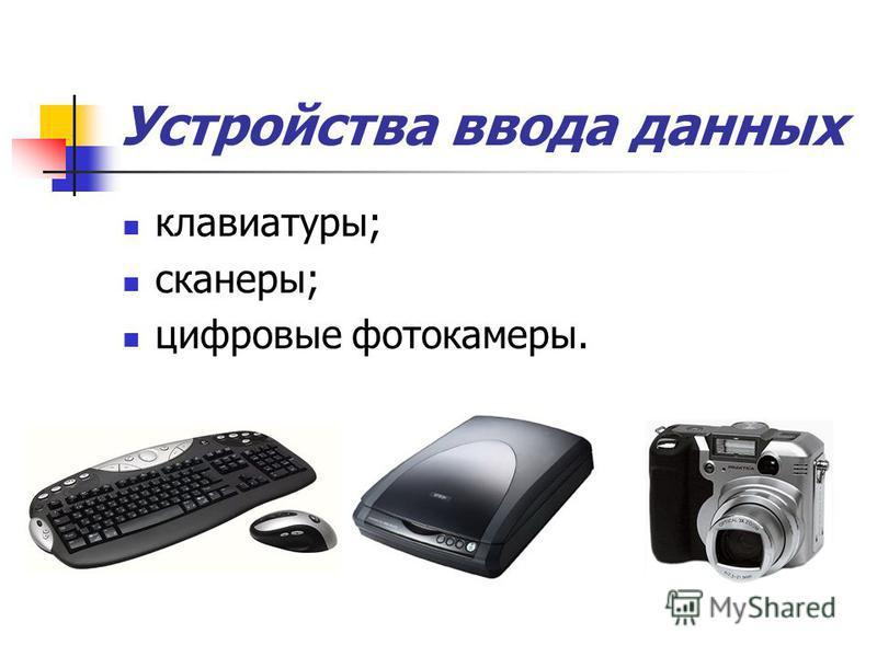 Устройства ввода данных клавиатуры; сканеры; цифровые фотокамеры.