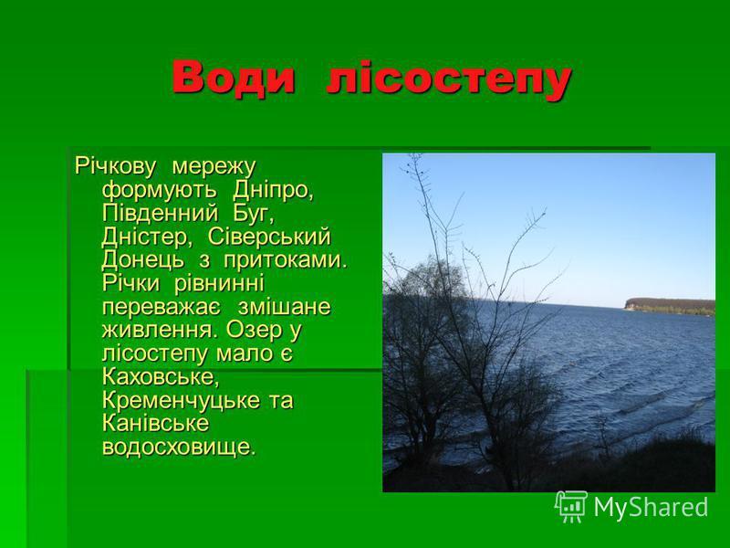 Води лісостепу Річкову мережу формують Дніпро, Південний Буг, Дністер, Сіверський Донець з притоками. Річки рівнинні переважає змішане живлення. Озер у лісостепу мало є Каховське, Кременчуцьке та Канівське водосховище.