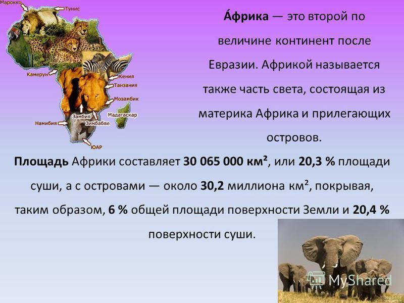 А́фрика это второй по величине континент после Евразии. Африкой называется также часть света, состоящая из материка Африка и прилегающих островов. Площадь Африки составляет 30 065 000 км², или 20,3 % площади суши, а с островами около 30,2 миллиона км