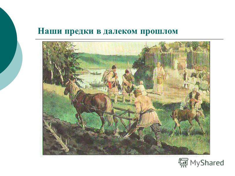 Наши предки в далеком прошлом