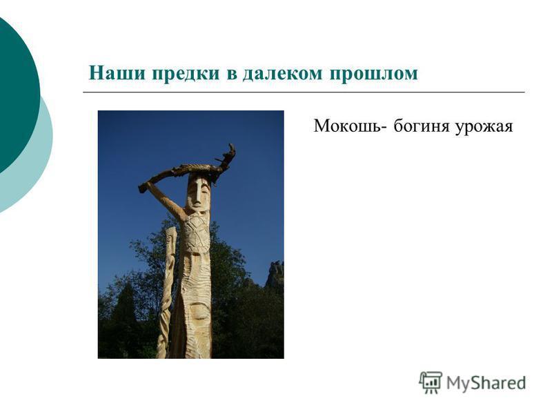 Наши предки в далеком прошлом Мокошь- богиня урожая