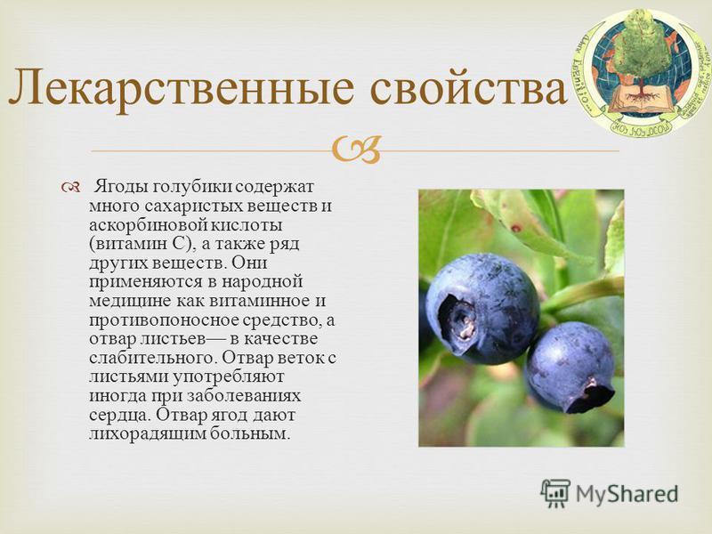 Лекарственные свойства Ягоды голубики содержат много сахаристых веществ и аскорбиновой кислоты ( витамин С ), а также ряд других веществ. Они применяются в народной медицине как витаминное и противопоносное средство, а отвар листьев в качестве слабит