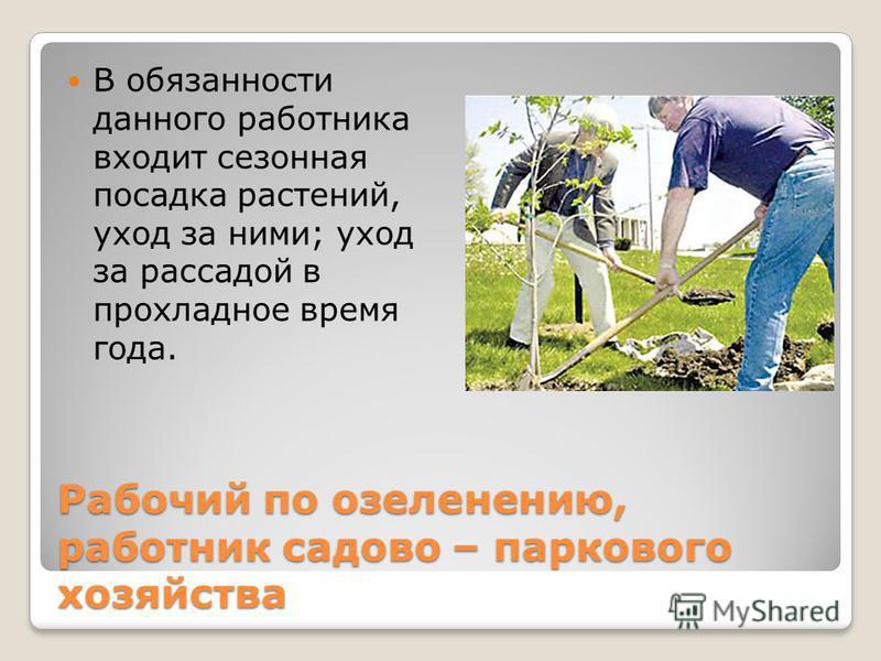 Рабочий по озеленению, работник садово – паркового хозяйства В обязанности данного работника входит сезонная посадка растений, уход за ними; уход за рассадой в прохладное время года.