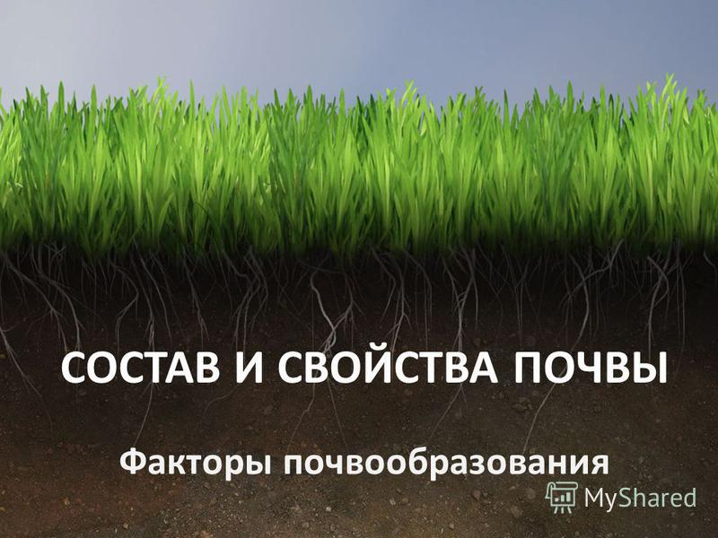 CОСТАВ И СВОЙСТВА ПОЧВЫ Факторы почвообразования