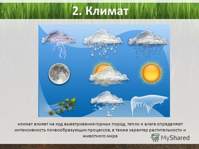 2. Климат климат влияет на ход выветривания горных пород, тепло и влага определяют интенсивность почвообразующих процессов, а также характер растительности и животного мира