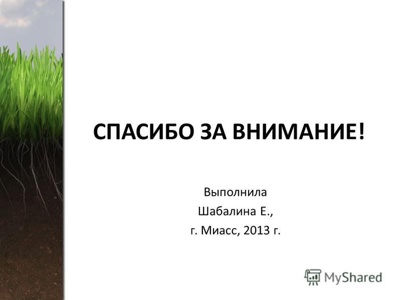 СПАСИБО ЗА ВНИМАНИЕ! Выполнила Шабалина Е., г. Миасс, 2013 г.
