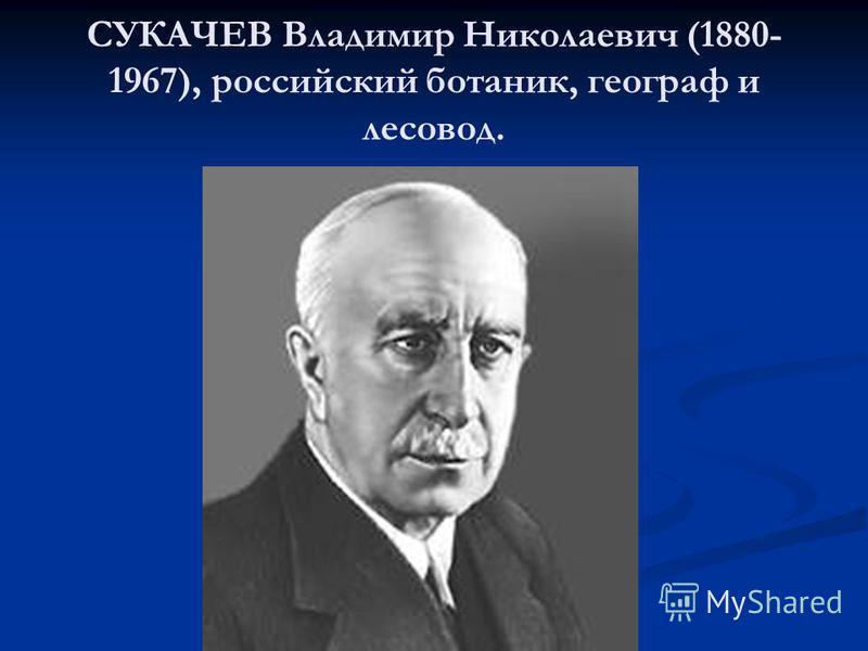 СУКАЧЕВ Владимир Николаевич (1880- 1967), российский ботаник, географ и лесовод.