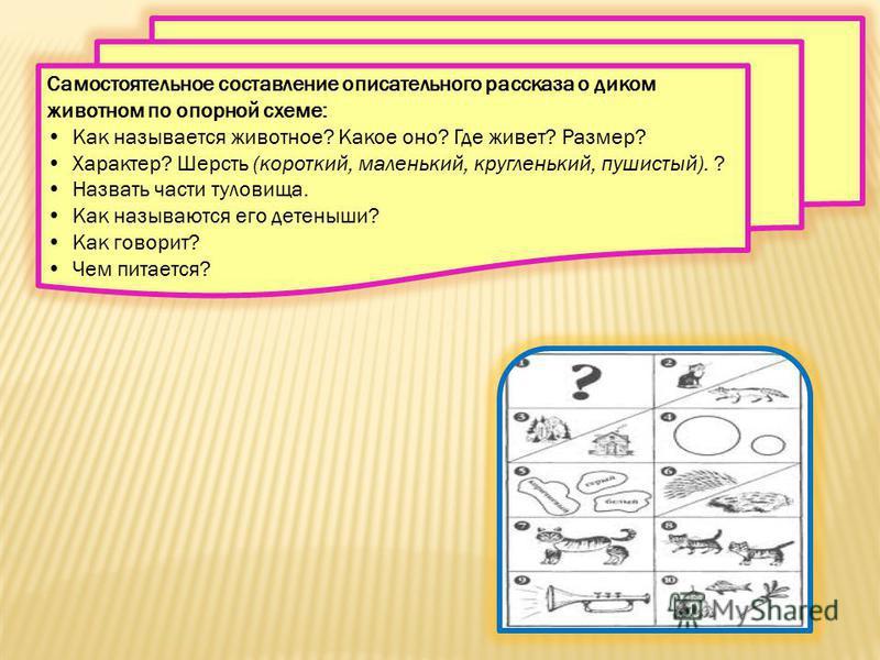 Самостоятельное составление описательного рассказа о диком животном по опорной схеме: Как называется животное? Какое оно? Где живет? Размер? Характер? Шерсть (короткий, маленький, кругленький, пушистый). ? Назвать части туловища. Как называются его д