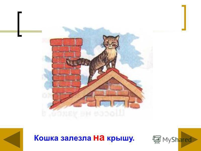 Кошка залезла на крышу.