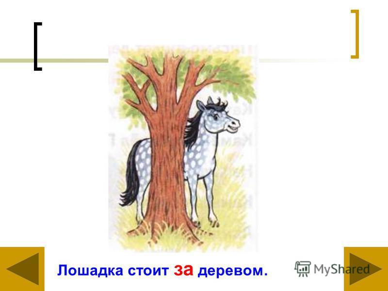 Лошадка стоит за деревом.