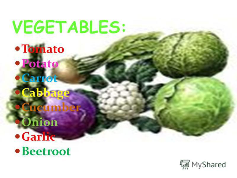 Tomato Potato Carrot Cabbage Cucumber Onion Garlic Beetroot VEGETABLES: