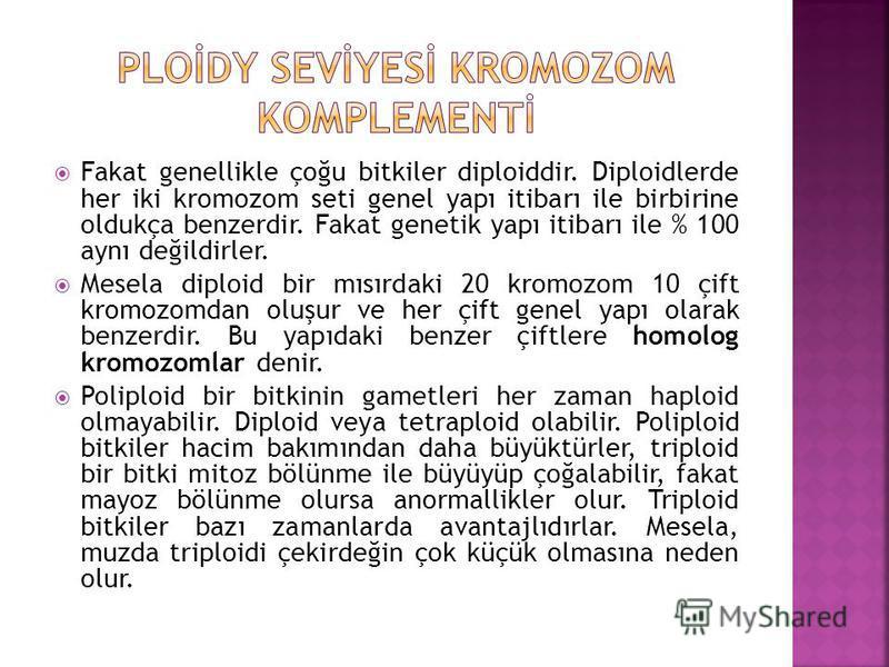 Kromozom. Haploid ve diploid kromozom seti