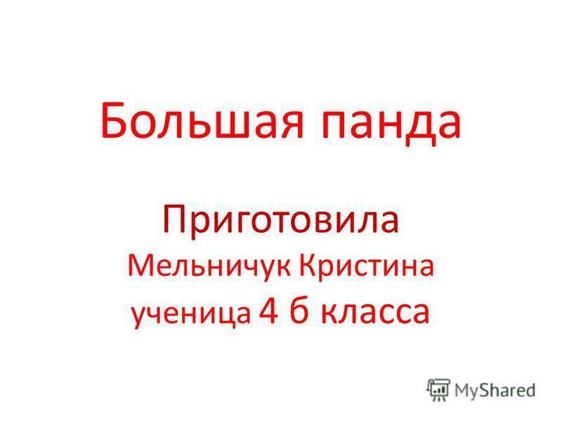 Большая панда Приготовила Мельничук Кристина ученица 4 б класса