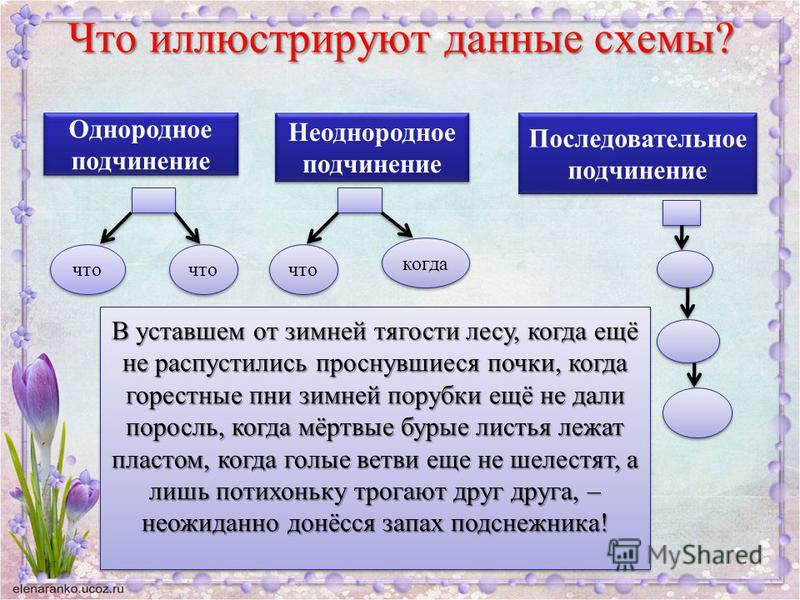 Что иллюстрируют данные схемы? Однородное подчинение Однородное подчинение что Неоднородное подчинение Неоднородное подчинение что когда Последовательное подчинение Последовательное подчинение В уставшем от зимней тягости лесу, когда ещё не распустил