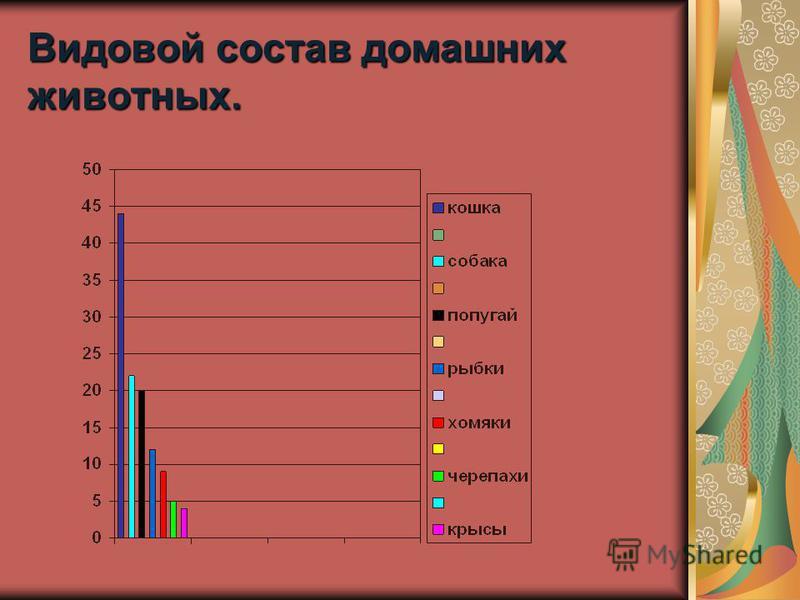 Видовой состав домашних животных.
