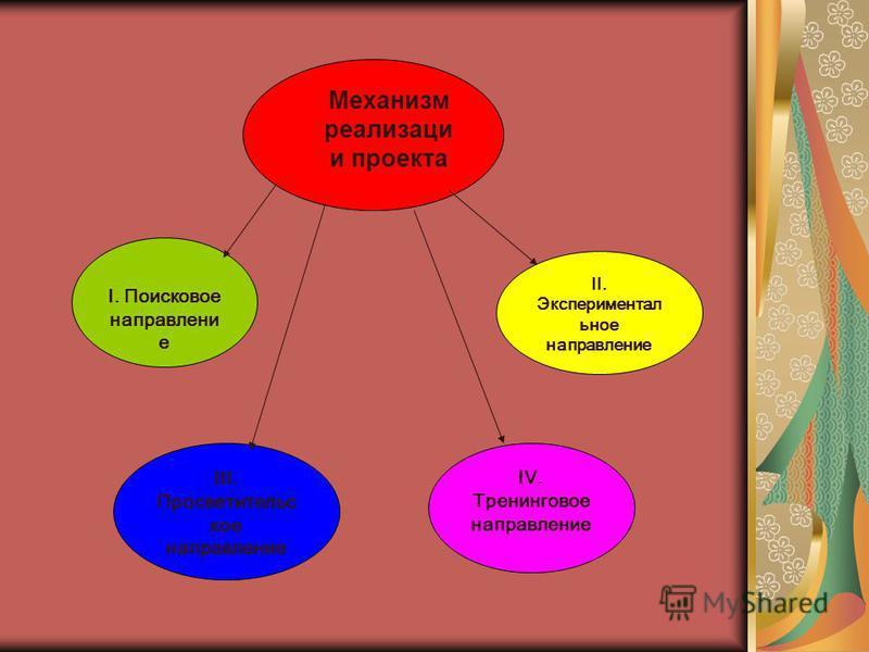 Механизм реализации проекта I. Поисковое направление II. Экспериментал ьное направление III. Просветительс кое направление IV. Тренинговое направление