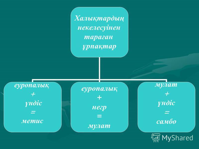Халықтардың некелесуінен тараған ұрпақтар еуропалық + үндіс = метис еуропалық + негр = мулат + үндіс = самбо