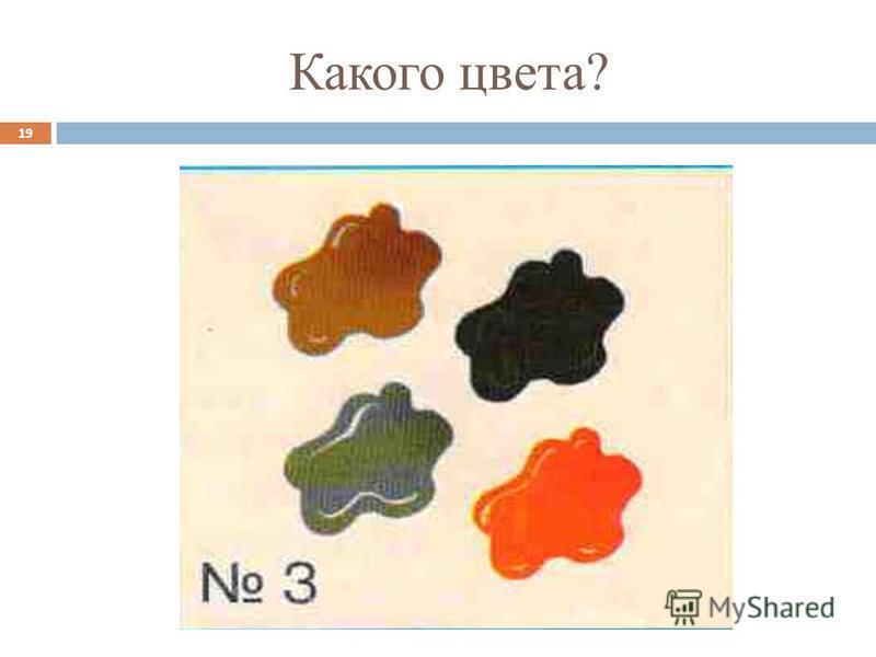 Какого цвета? 19