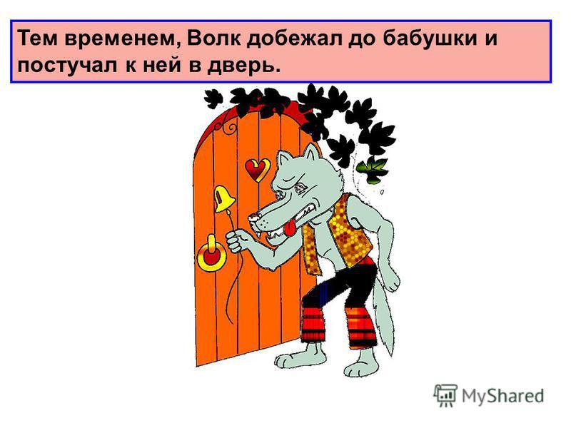 Тем временем, Волк добежал до бабушки и постучал к ней в дверь.