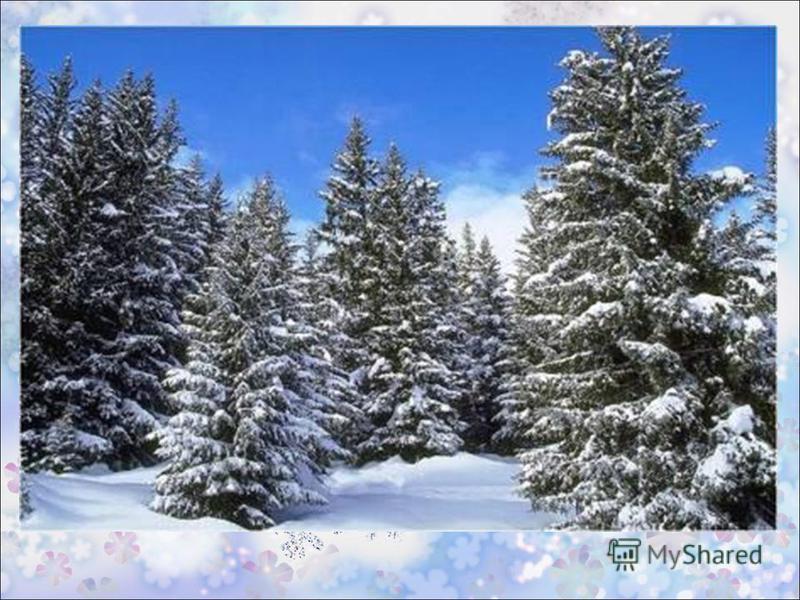 стихотворение о зиме в картинках