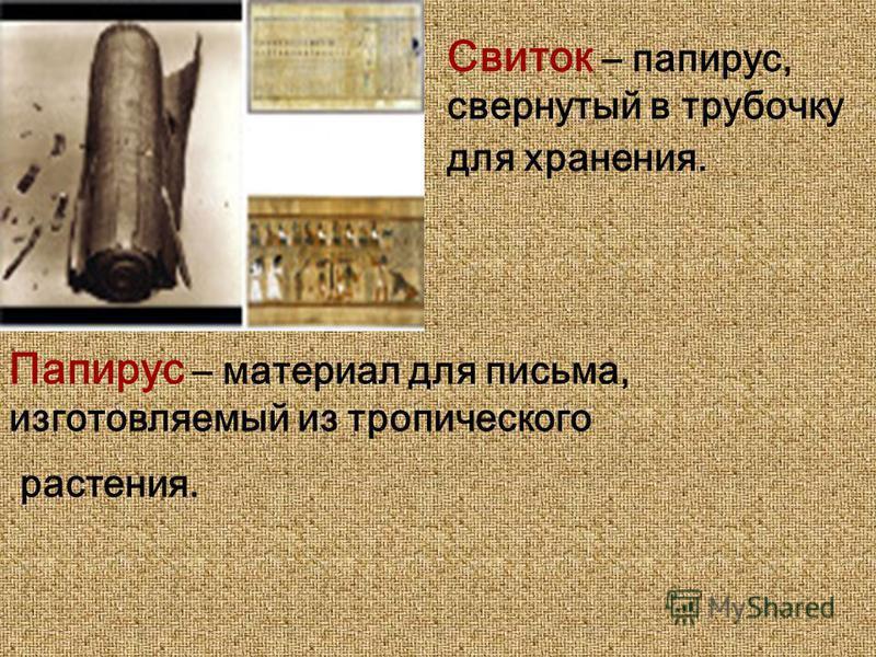 Свиток – папирус, свернутый в трубочку для хранения. Папирус – материал для письма, изготовляемый из тропического растения.