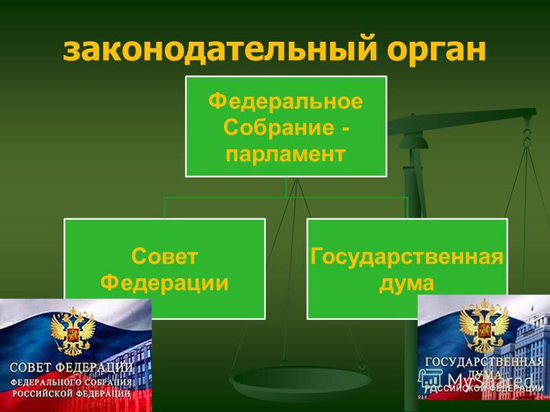 Федеральное Собрание - парламент Совет Федерации Государственная дума законодательный орган
