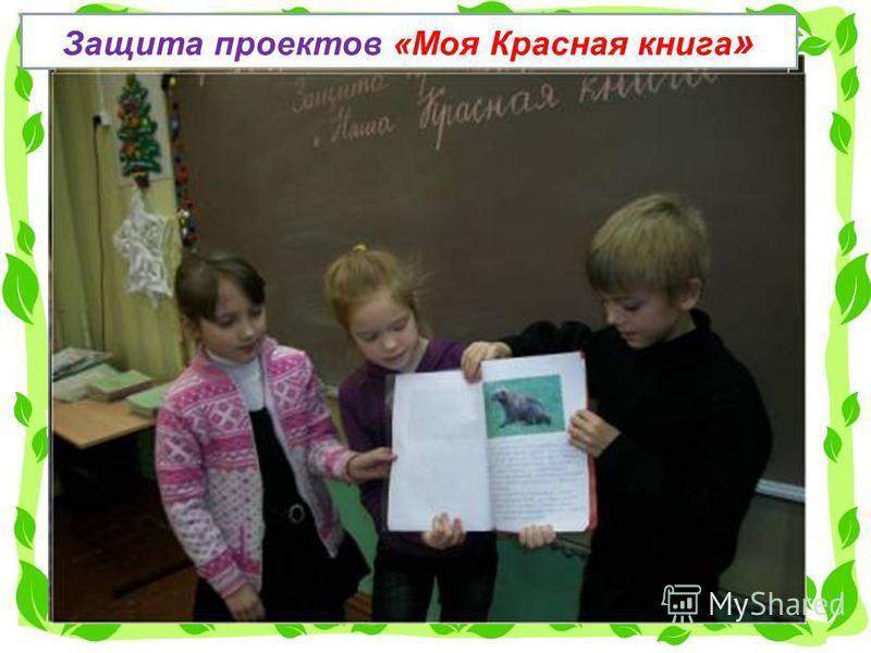 Защита проектов «Моя Красная книга »