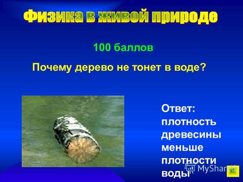 100 баллов Почему дерево не тонет в воде? Ответ: плотность древесины меньше плотности воды